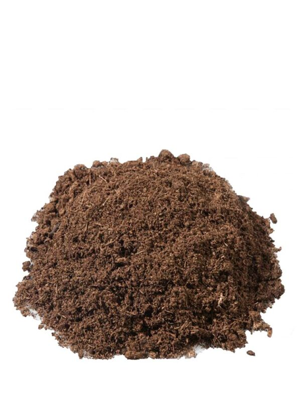 ithal torf sukulent kaktüs toprağı